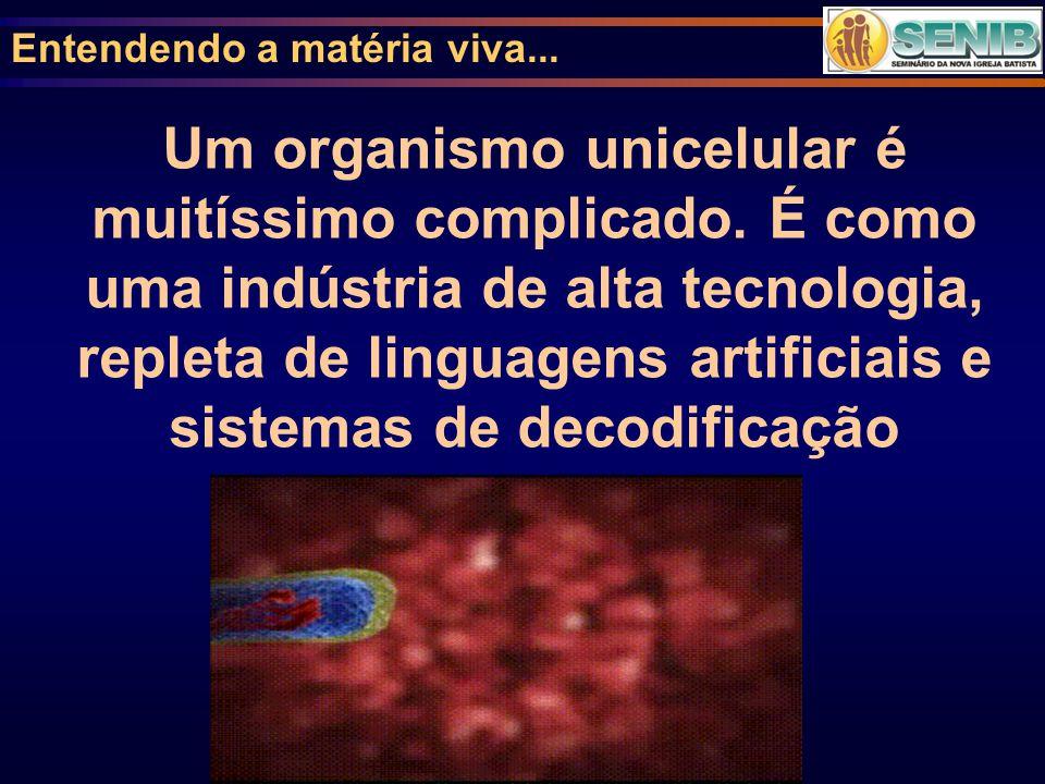 Entendendo a matéria viva... Um organismo unicelular é muitíssimo complicado. É como uma indústria de alta tecnologia, repleta de linguagens artificia