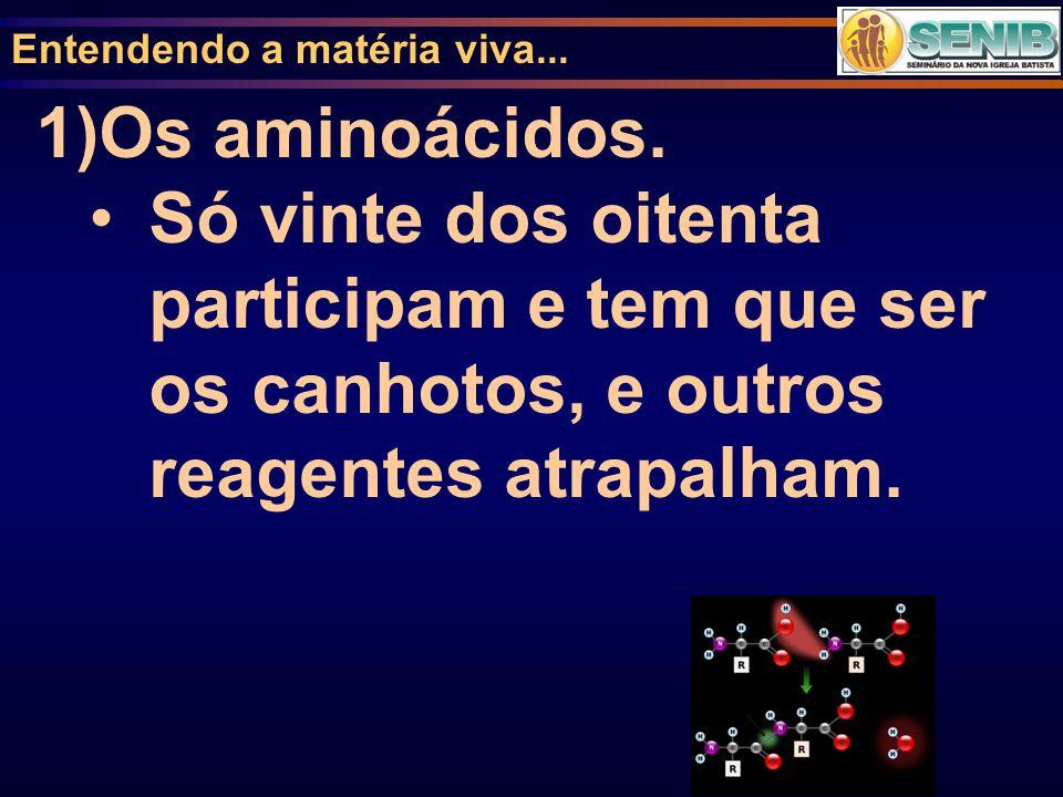 Entendendo a matéria viva... 1)Os aminoácidos. Só vinte dos oitenta participam e tem que ser os canhotos, e outros reagentes atrapalham.