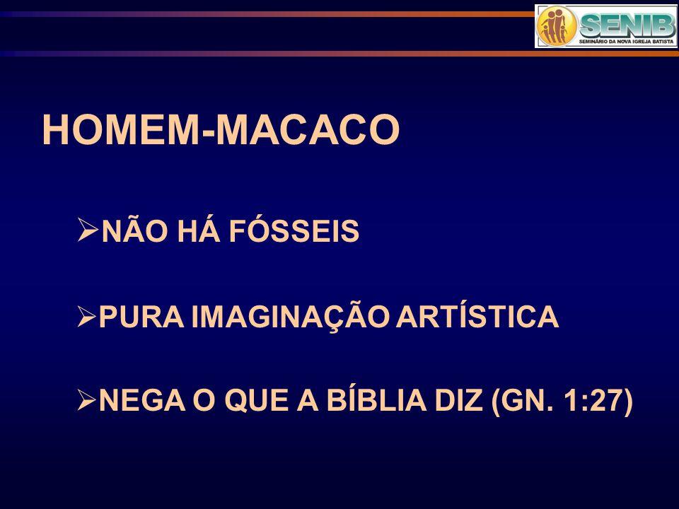 HOMEM-MACACO  NÃO HÁ FÓSSEIS  PURA IMAGINAÇÃO ARTÍSTICA  NEGA O QUE A BÍBLIA DIZ (GN. 1:27)