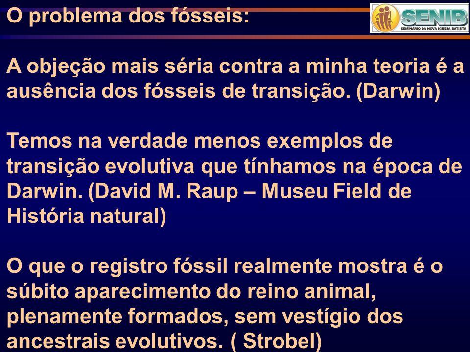 O problema dos fósseis: A objeção mais séria contra a minha teoria é a ausência dos fósseis de transição. (Darwin) Temos na verdade menos exemplos de