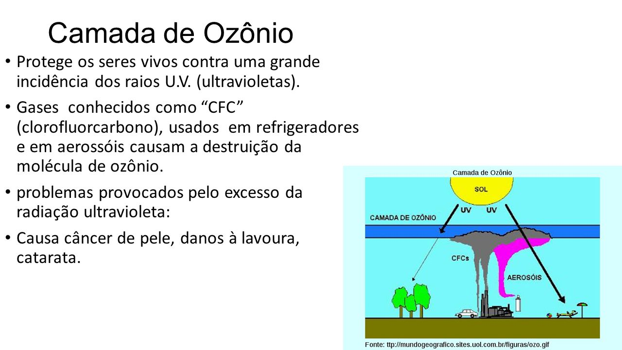 Camada de Ozônio Protege os seres vivos contra uma grande incidência dos raios U.V.