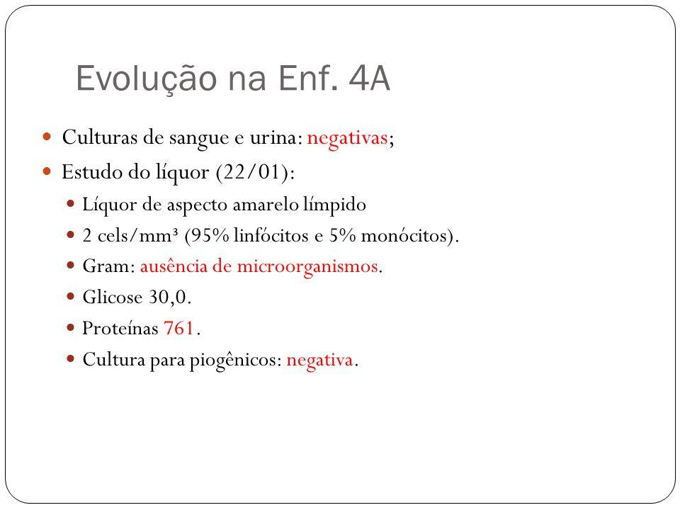 Evolução na Enf.4A Introduzido aciclovir no dia 22/01/14.