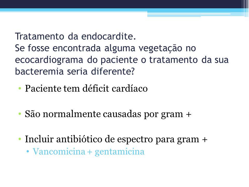 Tratamento da endocardite. Se fosse encontrada alguma vegetação no ecocardiograma do paciente o tratamento da sua bacteremia seria diferente? Paciente