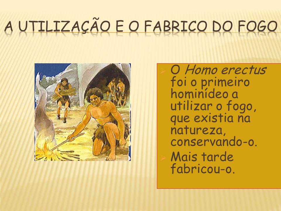 OO Homo erectus foi o primeiro hominídeo a utilizar o fogo, que existia na natureza, conservando-o. MMais tarde fabricou-o.