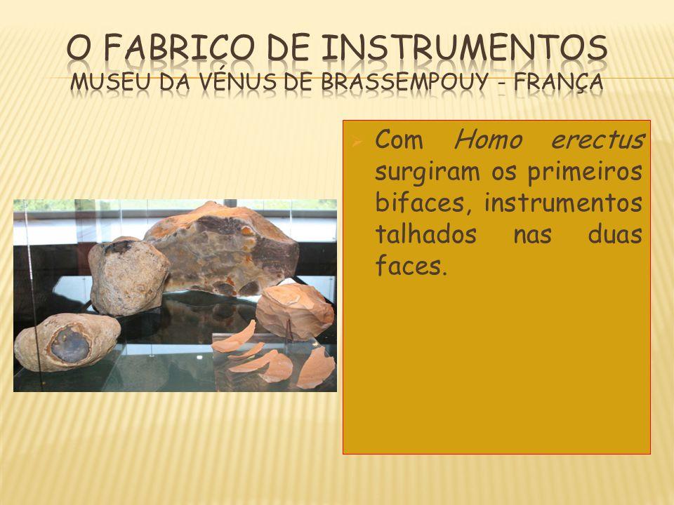  Com Homo erectus surgiram os primeiros bifaces, instrumentos talhados nas duas faces.