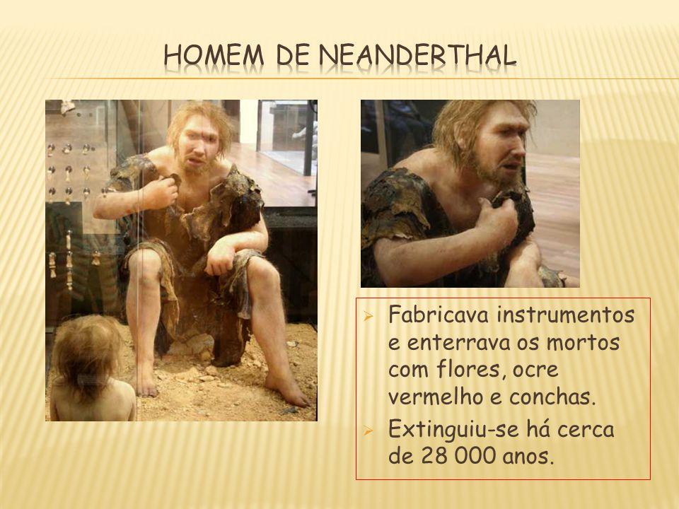 FFabricava instrumentos e enterrava os mortos com flores, ocre vermelho e conchas. EExtinguiu-se há cerca de 28 000 anos.