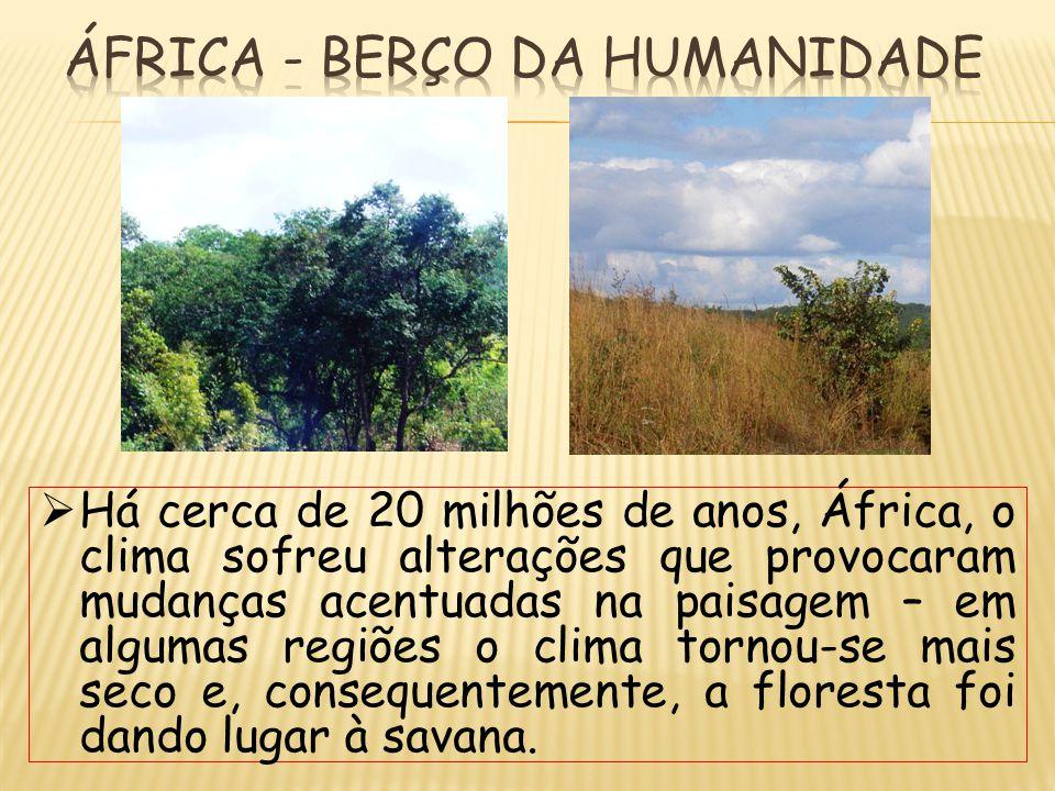  Há cerca de 20 milhões de anos, África, o clima sofreu alterações que provocaram mudanças acentuadas na paisagem – em algumas regiões o clima tornou