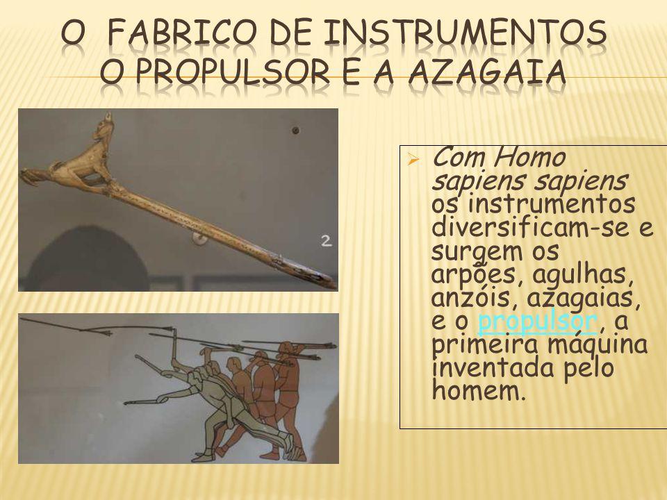 CCom Homo sapiens sapiens os instrumentos diversificam-se e surgem os arpões, agulhas, anzóis, azagaias, e o propulsor, a primeira máquina inventada
