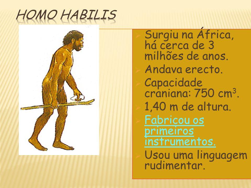 SSurgiu na África, há cerca de 3 milhões de anos. AAndava erecto. CCapacidade craniana: 750 cm 3. 11,40 m de altura. FFabricou os primeiros