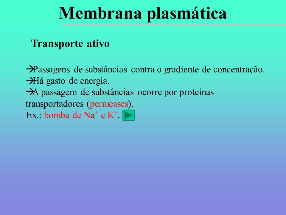 Transporte ativo  Passagens de substâncias contra o gradiente de concentração.