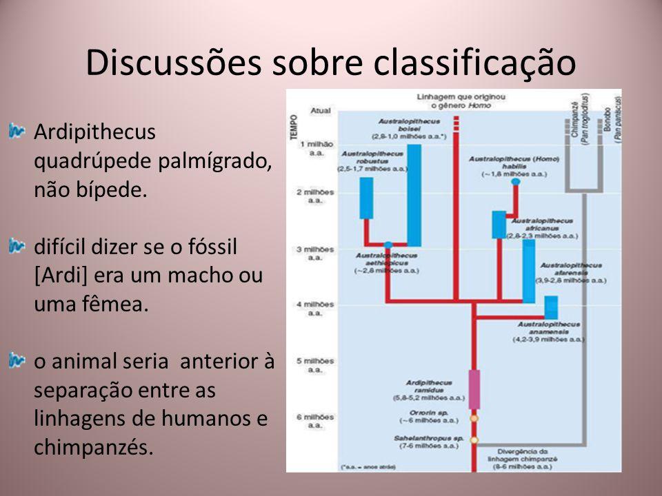 Discussões sobre classificação Ardipithecus quadrúpede palmígrado, não bípede. difícil dizer se o fóssil [Ardi] era um macho ou uma fêmea. o animal se