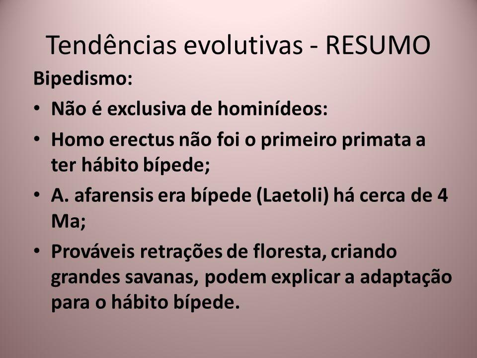 Bipedismo: Não é exclusiva de hominídeos: Homo erectus não foi o primeiro primata a ter hábito bípede; A. afarensis era bípede (Laetoli) há cerca de 4
