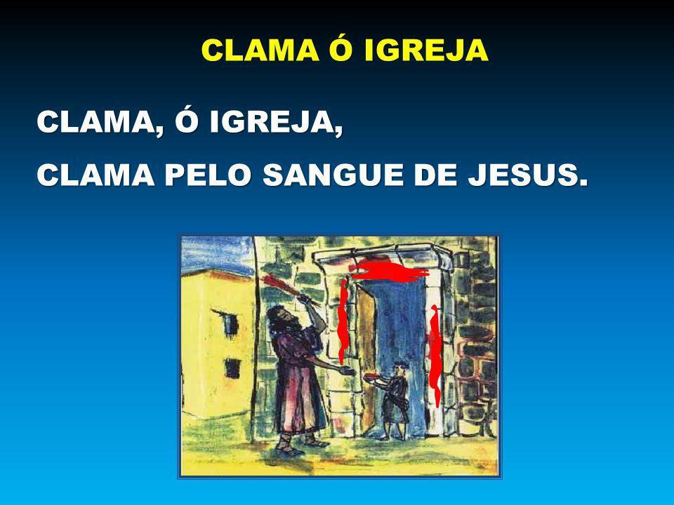 JESUS OS MANDA DE VOLTA AO MAR E MUITOS PEIXES PESCAR
