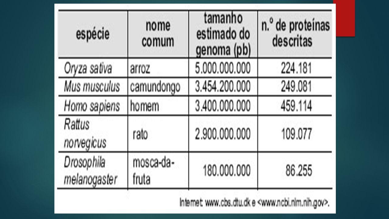  03. Define-se genoma como o conjunto de todo o material genético de uma espécie, que, na maioria dos casos, são as moléculas de DNA. Durante muito t