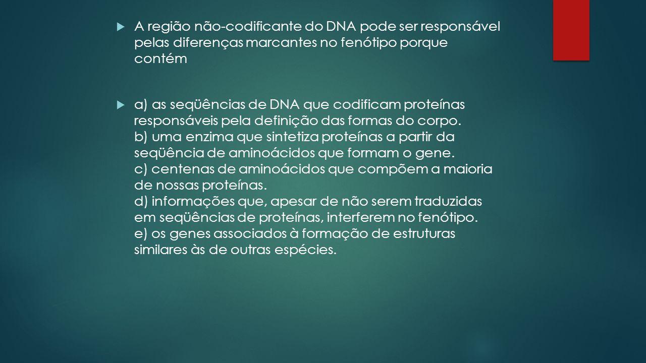  A região não-codificante do DNA pode ser responsável pelas diferenças marcantes no fenótipo porque contém  a) as seqüências de DNA que codificam proteínas responsáveis pela definição das formas do corpo.