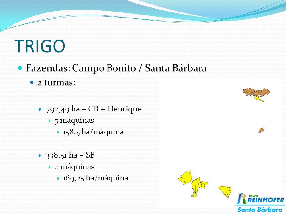 TRIGO Fazendas: Campo Bonito / Santa Bárbara 2 turmas: 792,49 ha – CB + Henrique 5 máquinas 158,5 ha/máquina 338,51 ha – SB 2 máquinas 169,25 ha/máquina