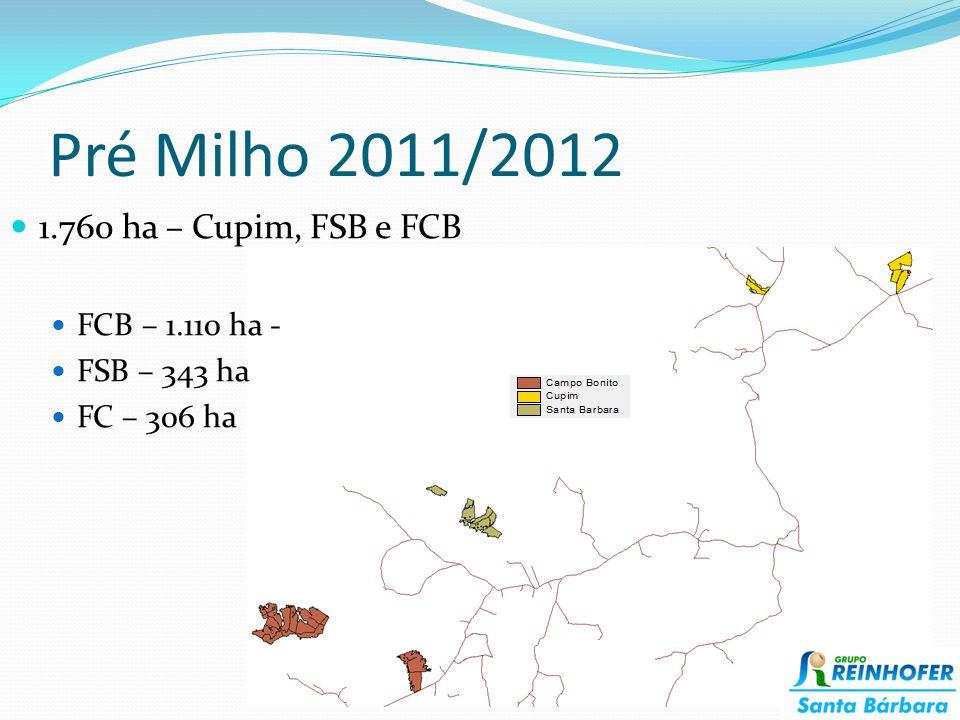Pré Milho 2011/2012 1.760 ha – Cupim, FSB e FCB FCB – 1.110 ha - FSB – 343 ha FC – 306 ha