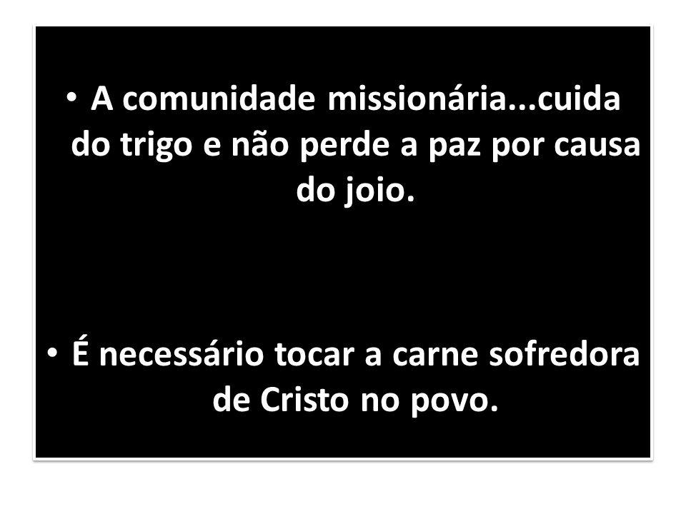A comunidade missionária...cuida do trigo e não perde a paz por causa do joio. É necessário tocar a carne sofredora de Cristo no povo. A comunidade mi