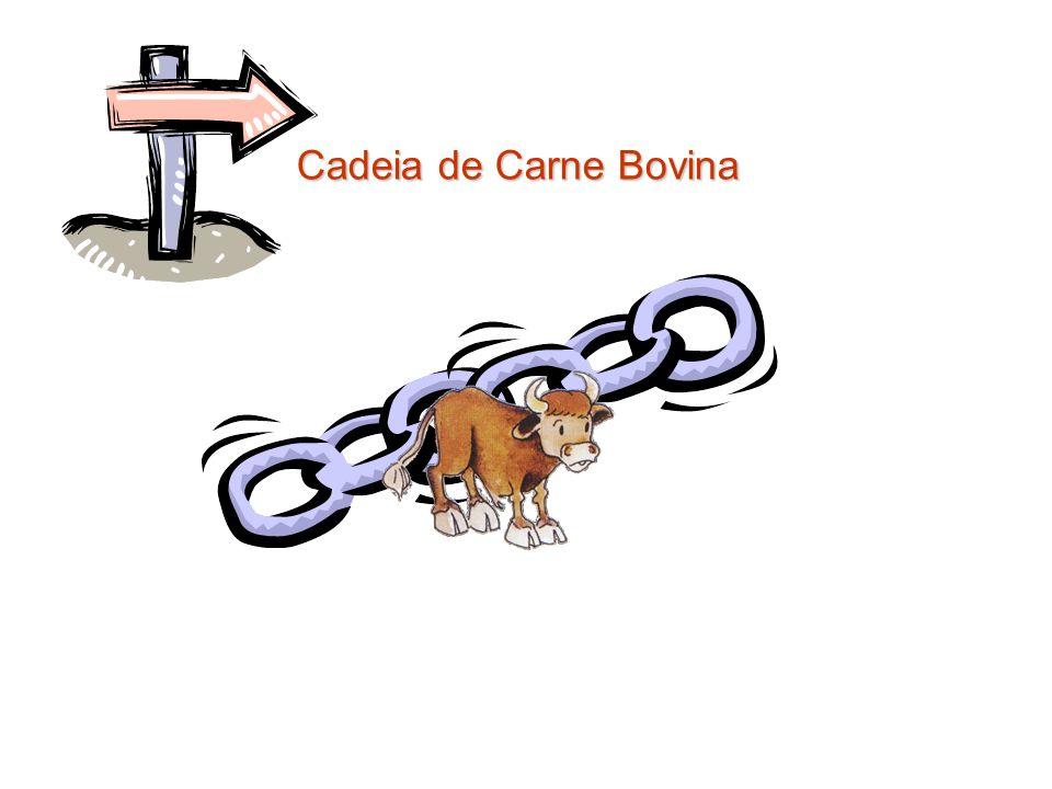 Cadeia de Carne Bovina