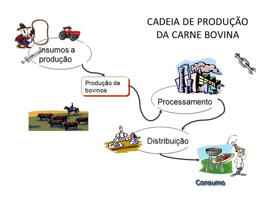 CADEIA DE PRODUÇÃO DA CARNE BOVINA ConsumoConsumo Processamento Distribuição Insumos a produção Produção de bovinos