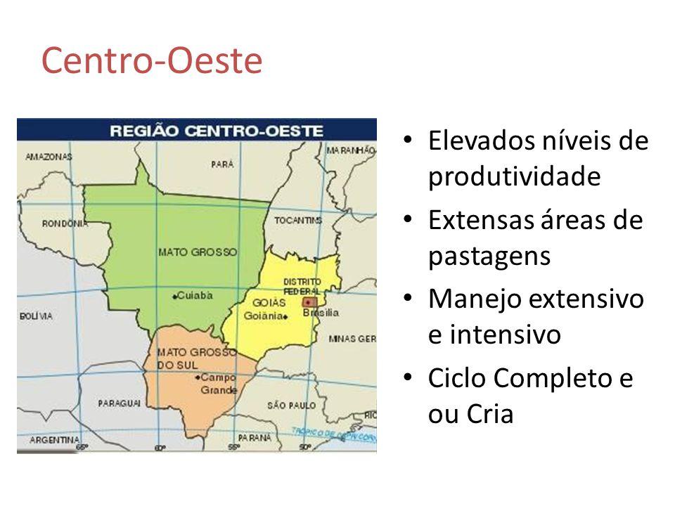 Elevados níveis de produtividade Extensas áreas de pastagens Manejo extensivo e intensivo Ciclo Completo e ou Cria Centro-Oeste