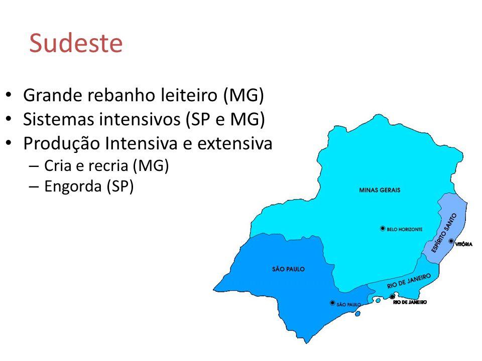 Grande rebanho leiteiro (MG) Sistemas intensivos (SP e MG) Produção Intensiva e extensiva – Cria e recria (MG) – Engorda (SP) Sudeste