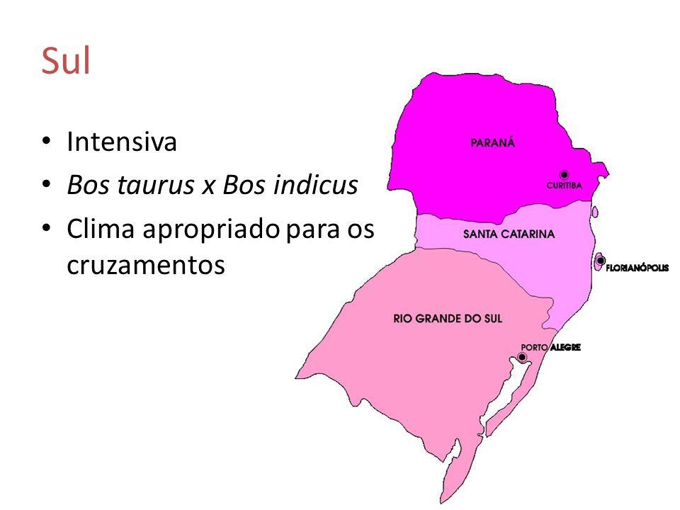 Intensiva Bos taurus x Bos indicus Clima apropriado para os cruzamentos Sul