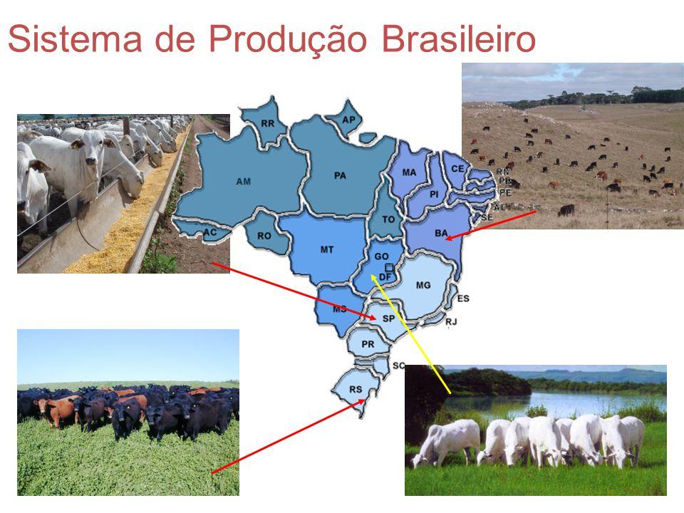 Sistema de Produção Brasileiro