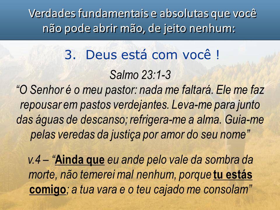 """Verdades fundamentais e absolutas que você não pode abrir mão, de jeito nenhum: 3. Deus está com você ! Salmo 23:1-3 """"O Senhor é o meu pastor: nada me"""