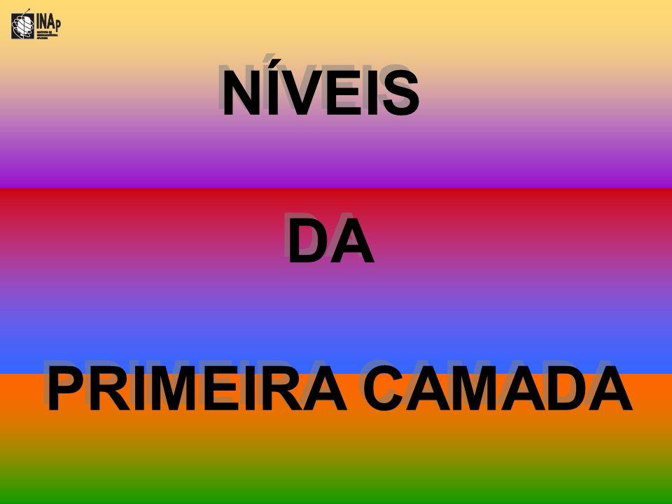 NÍVEIS DA PRIMEIRA CAMADA NÍVEIS DA PRIMEIRA CAMADA