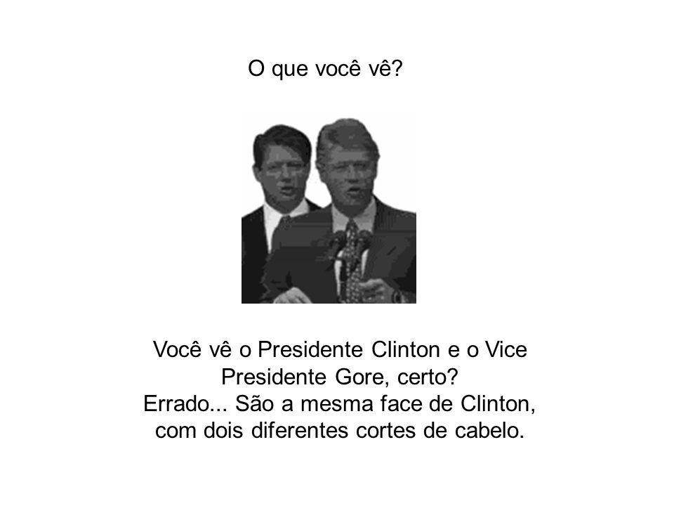 Você vê o Presidente Clinton e o Vice Presidente Gore, certo? Errado... São a mesma face de Clinton, com dois diferentes cortes de cabelo. O que você