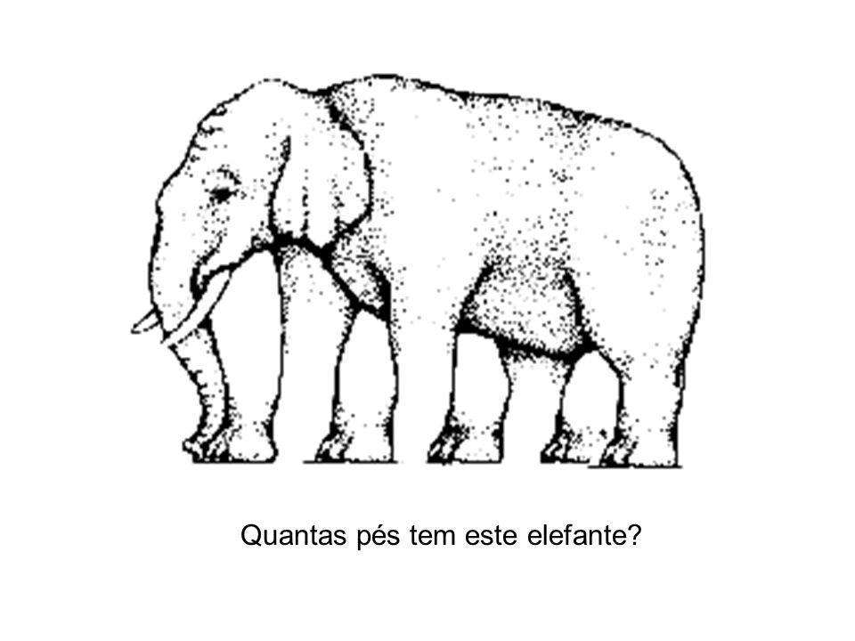 Quantas pés tem este elefante?