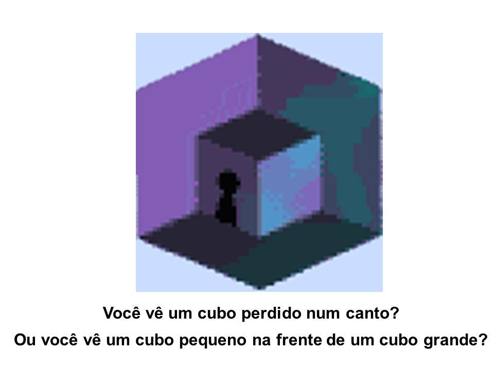 Você vê um cubo perdido num canto? Ou você vê um cubo pequeno na frente de um cubo grande?