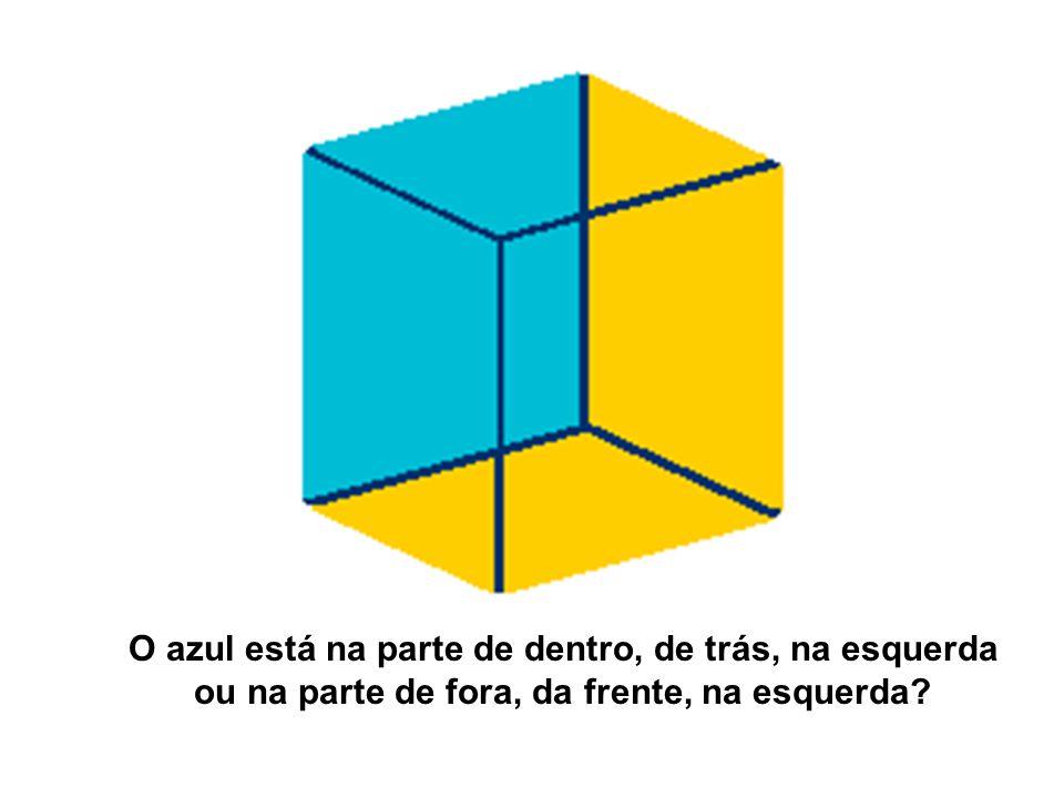 O azul está na parte de dentro, de trás, na esquerda ou na parte de fora, da frente, na esquerda?