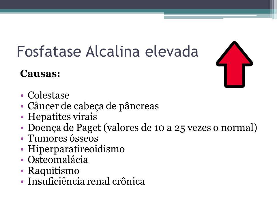 Fosfatase Alcalina elevada Causas: Colestase Câncer de cabeça de pâncreas Hepatites virais Doença de Paget (valores de 10 a 25 vezes o normal) Tumores