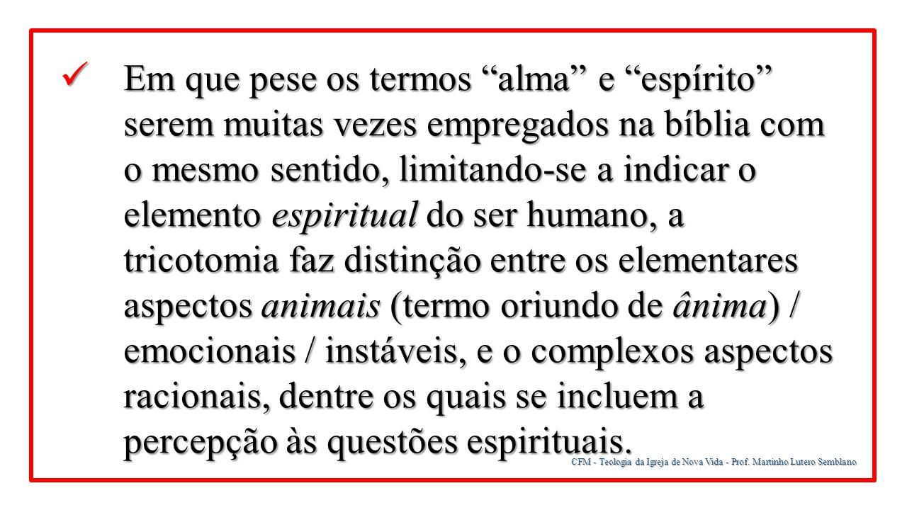 """CFM - Teologia da Igreja de Nova Vida - Prof. Martinho Lutero Semblano Em que pese os termos """"alma"""" e """"espírito"""" serem muitas vezes empregados na bíbl"""