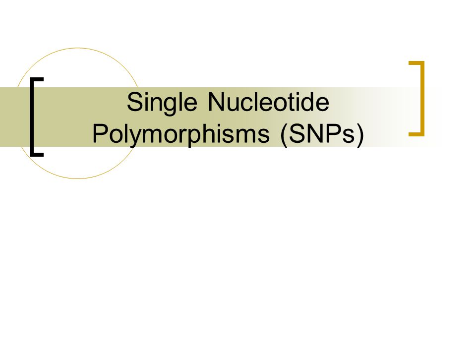 Single Nucleotide Polymorphisms (SNPs)