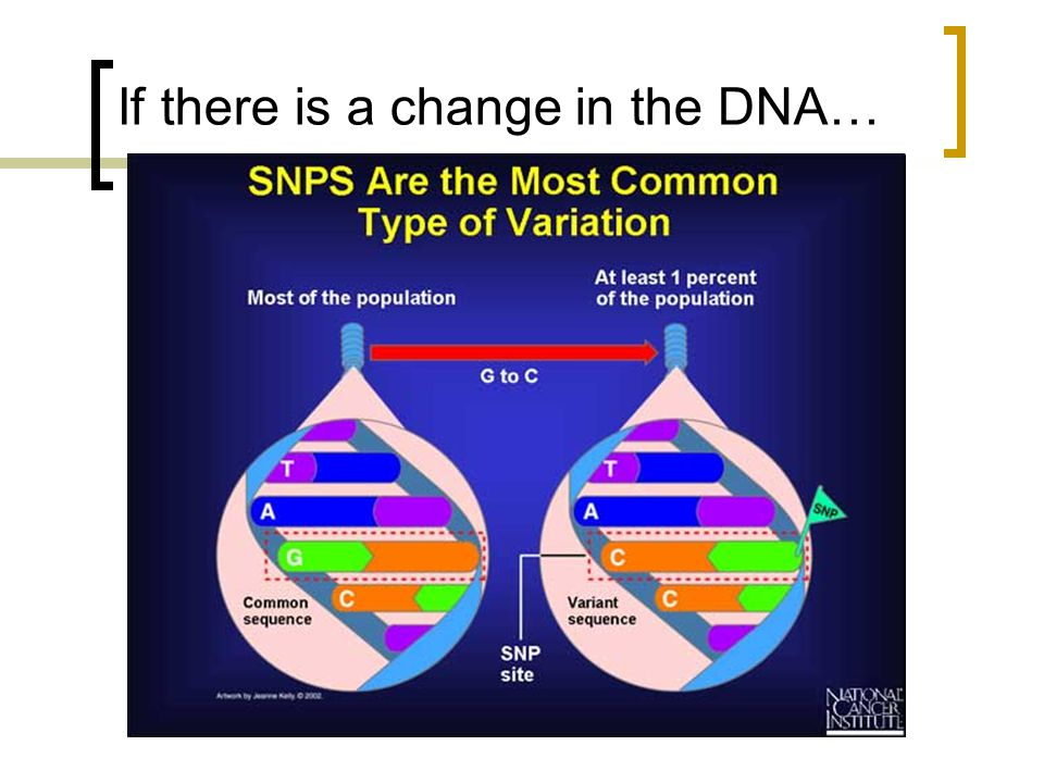 If there is a change in the DNA…