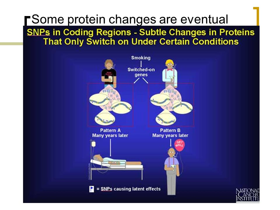 Some protein changes are eventual
