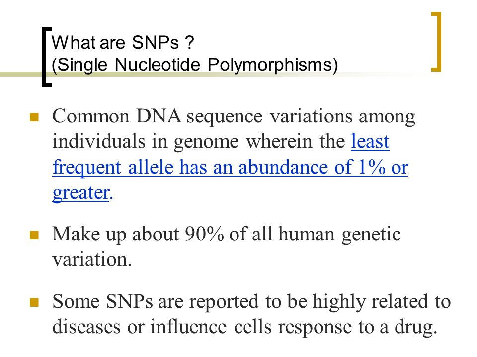 What are SNPs .