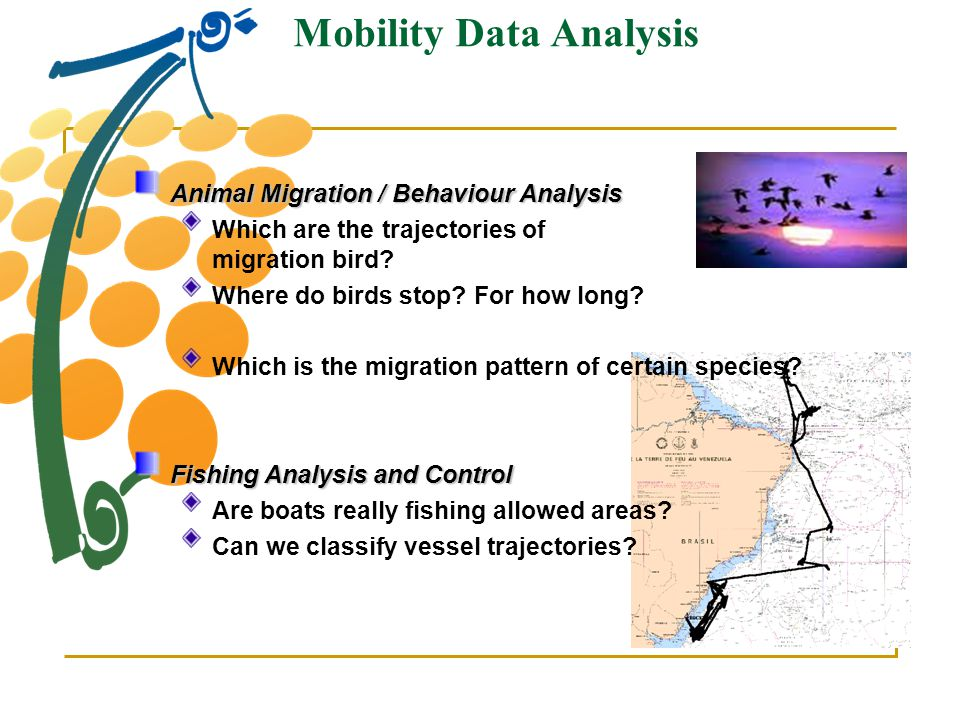 Mobility Data Analysis Animal Migration / Behaviour Analysis Which are the trajectories of a given migration bird? Where do birds stop? For how long?