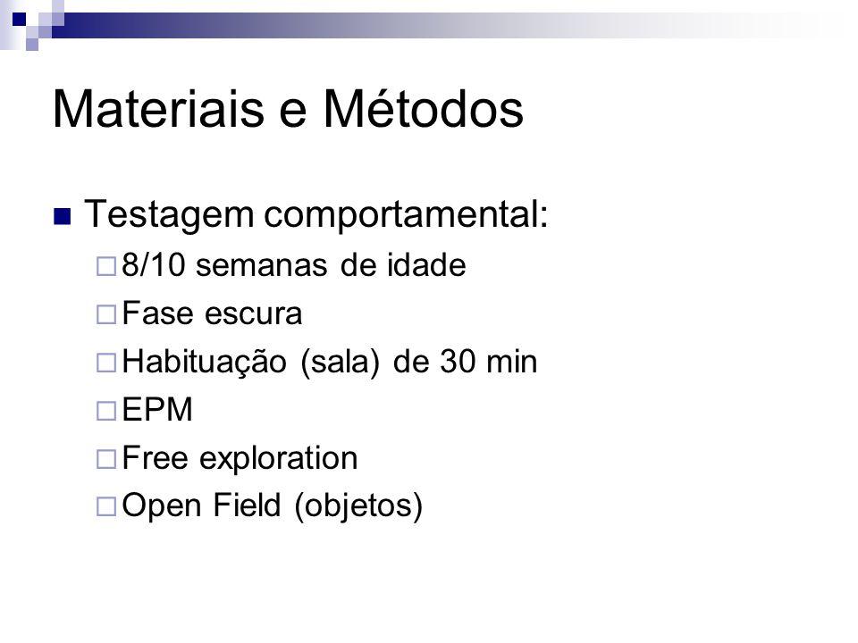 Materiais e Métodos Testagem comportamental:  8/10 semanas de idade  Fase escura  Habituação (sala) de 30 min  EPM  Free exploration  Open Field (objetos)