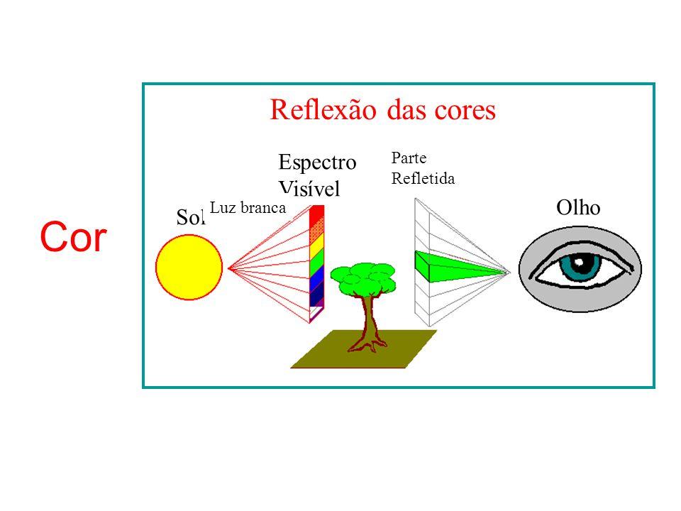 Cor Reflexão das cores Sol Espectro Visível Luz branca Parte Refletida Olho
