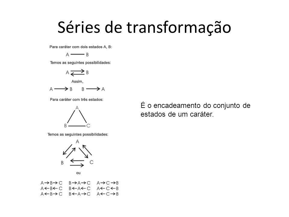Séries de transformação É o encadeamento do conjunto de estados de um caráter.