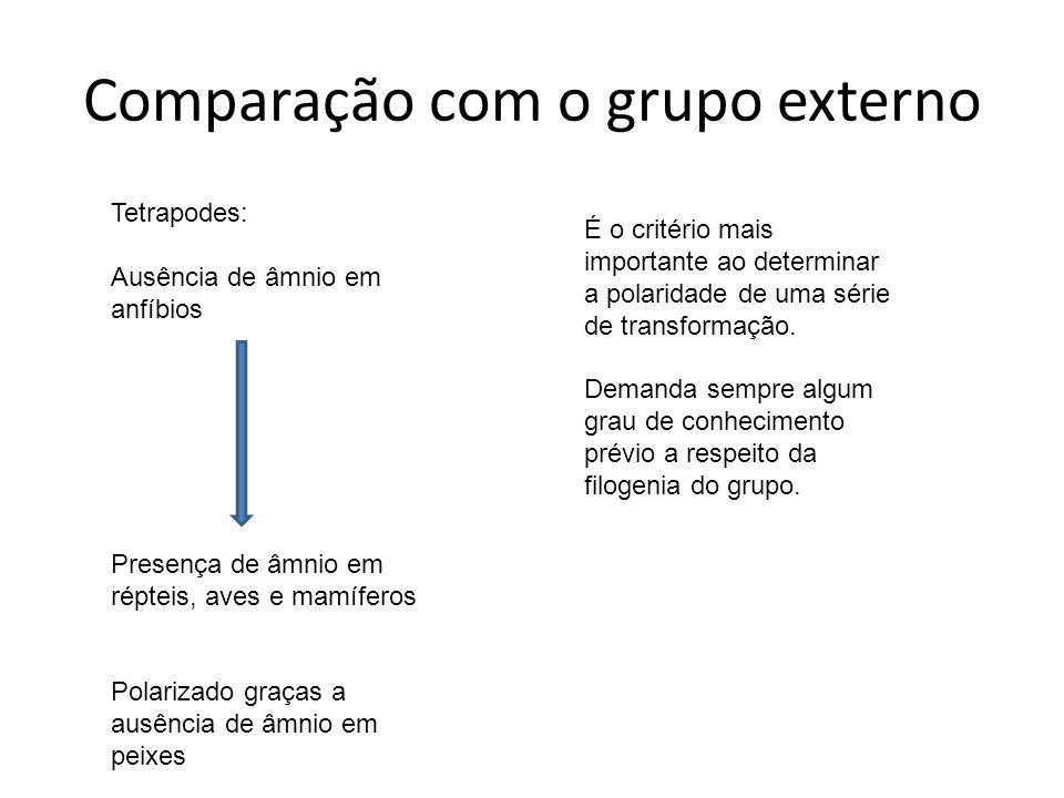 Comparação com o grupo externo É o critério mais importante ao determinar a polaridade de uma série de transformação. Demanda sempre algum grau de con