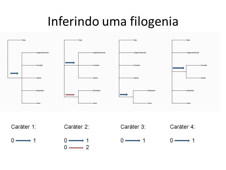Inferindo uma filogenia Caráter 1: 0 1 Caráter 2: 0 1 0 2 Caráter 3: 0 1 Caráter 4: 0 1