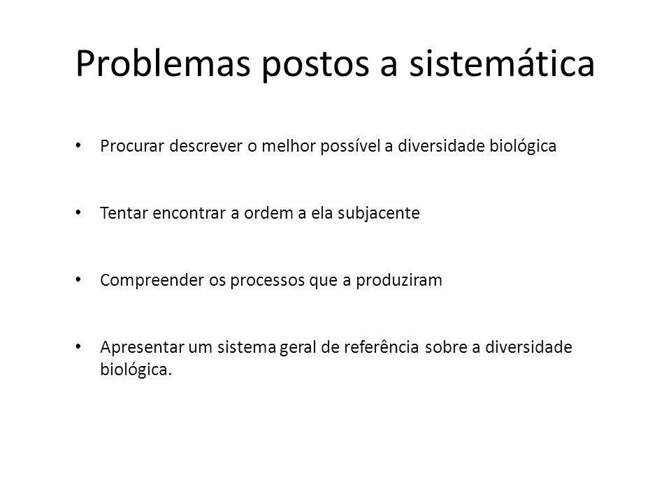 Problemas postos a sistemática Procurar descrever o melhor possível a diversidade biológica Tentar encontrar a ordem a ela subjacente Compreender os p