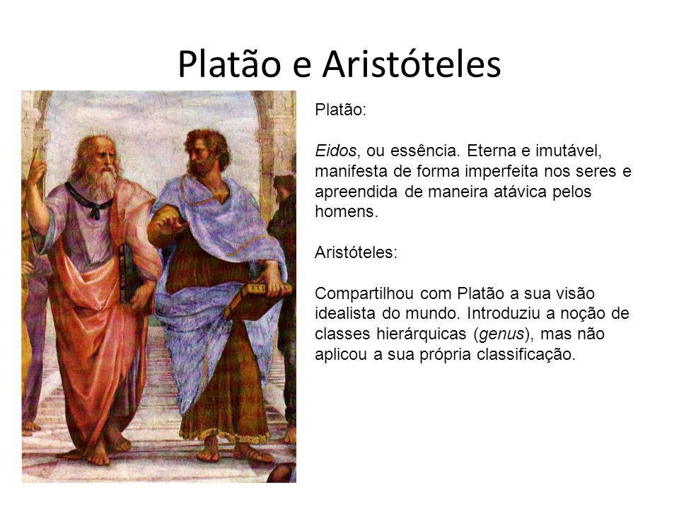 Platão e Aristóteles Platão: Eidos, ou essência. Eterna e imutável, manifesta de forma imperfeita nos seres e apreendida de maneira atávica pelos home