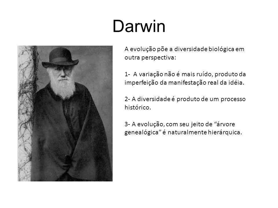Darwin A evolução põe a diversidade biológica em outra perspectiva: 1- A variação não é mais ruído, produto da imperfeição da manifestação real da idé