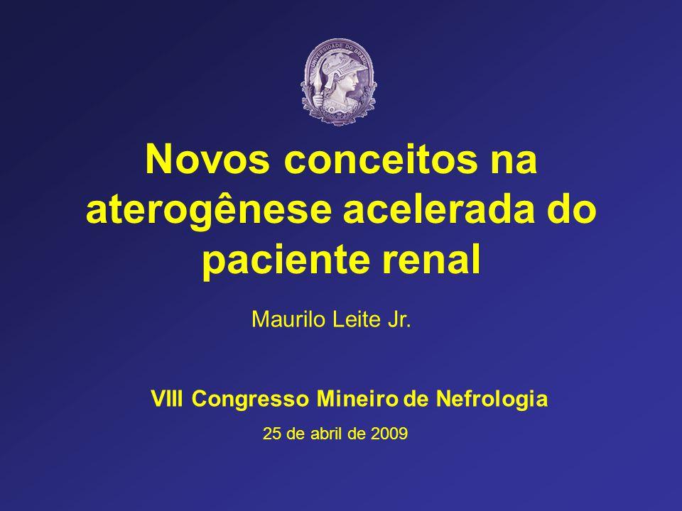 Novos conceitos na aterogênese acelerada do paciente renal VIII Congresso Mineiro de Nefrologia Maurilo Leite Jr. 25 de abril de 2009
